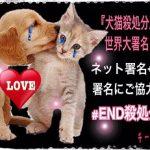 署名のお願い@犬猫殺処分廃止100万人世界大署名プロジェクト