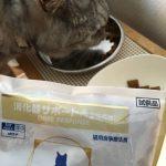 猫の不調はすっかり元通り 今日は便秘で受診したけど・・・・