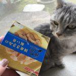 魚派の猫だけど【懐石zeppin 国産ささみの祝い肴】はペロリ