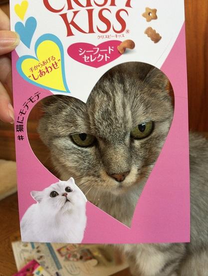 モンプチさんから猫のおやつ『クリスピーキッス シーフードセレクト』が届いた!