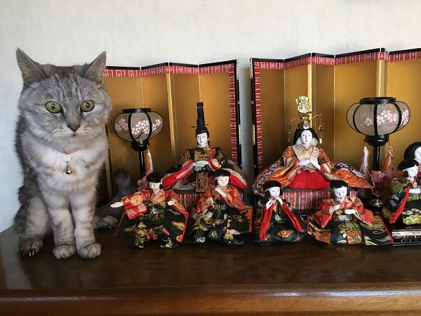 猫とお雛様 '2018