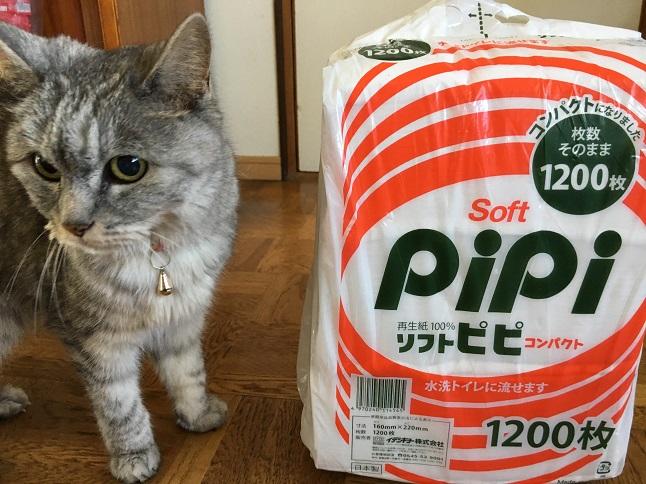 またまたシニア猫のトイレ事情◇片づけ編
