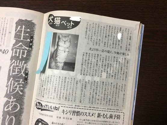 我が家の猫の特技と2006年に掲載された週刊誌《2008年動画あり》