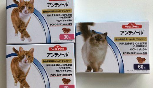 【動画あり】アンチノールの定期購入始めました&おひざで食べる老猫