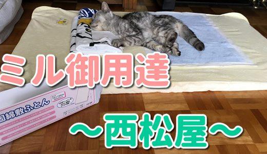 【動画あり】老猫ミル御用達『西松屋』のベビー用敷き布団買った