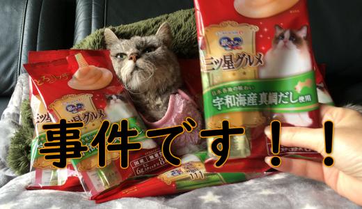 事件です!?老猫の大好物のたい味が販売終了|動画